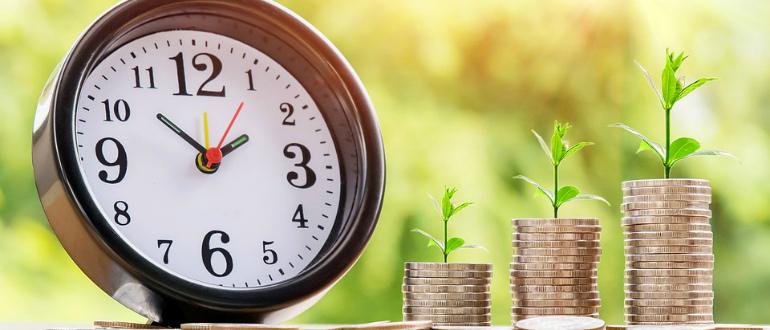 Организационно-правовая форма: как правильно заполнять ОПФ в Сбербанке онлайн при заявке на кредит